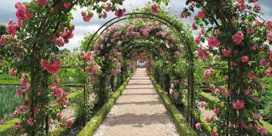 Jardines del mediterraneo. fotos clima mediterraneo. Plantas para jardin mediterraneo